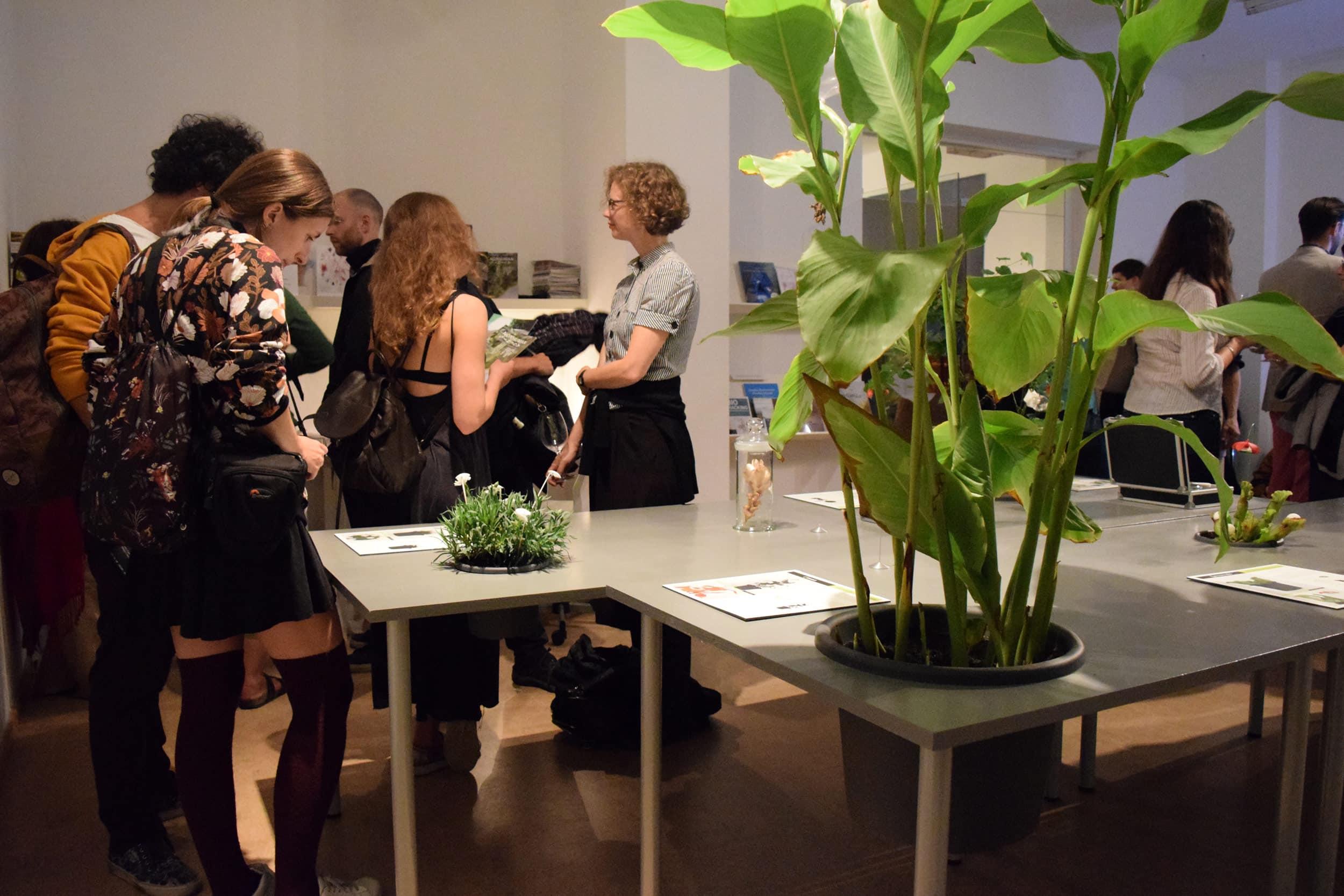 "Vernissage der Ausstellung ""Strange Encounters with Vegetal Others,""      Špela Petrič. Foto: Miha Tursič"
